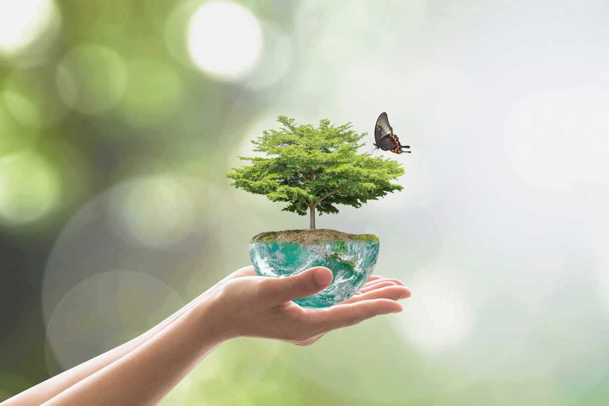 Tips for Greener Business Practices